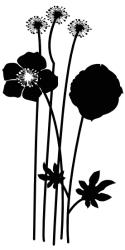 Naklejka ścienna - różne kwiatki kw16